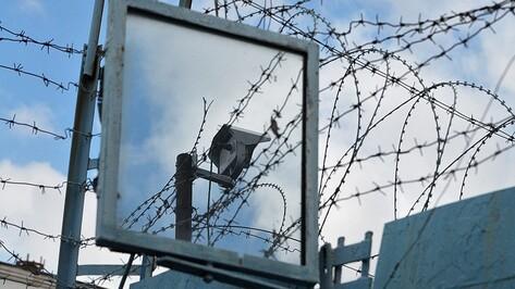 Виновник ДТП с двумя погибшими под Воронежем отправится на 3 года в колонию