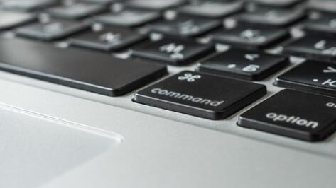 Большинство участников Всероссийской переписи населения пройдут ее онлайн