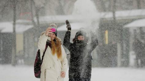 Снегом завалит Воронежскую область к концу рабочей недели