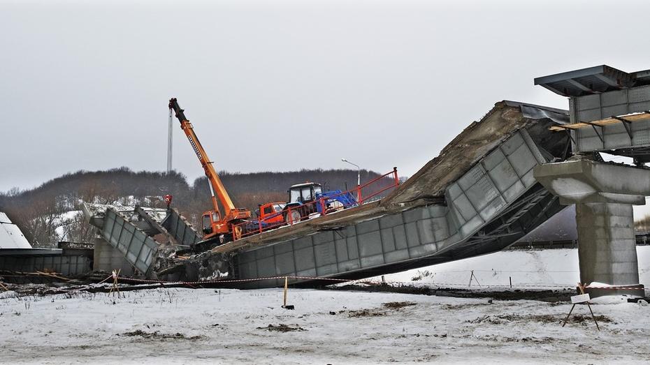 Директор воронежской фирмы ответит за гибель рабочего при обрушении моста через реку Ворона