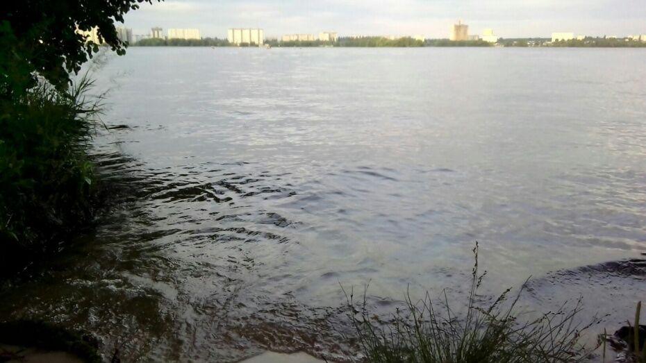В Воронеже в реке Усманка утонул мужчина