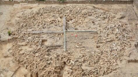 Археологи из 26 городов России и ближнего зарубежья съедутся в Воронеж