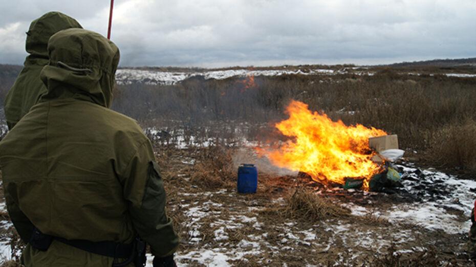 Воронежские наркополицейские сожгли 29 кг наркотиков