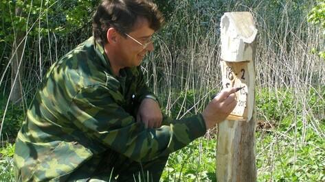 В Нижнедевицком районе высажено более 60 тысяч саженцев черешчатого дуба