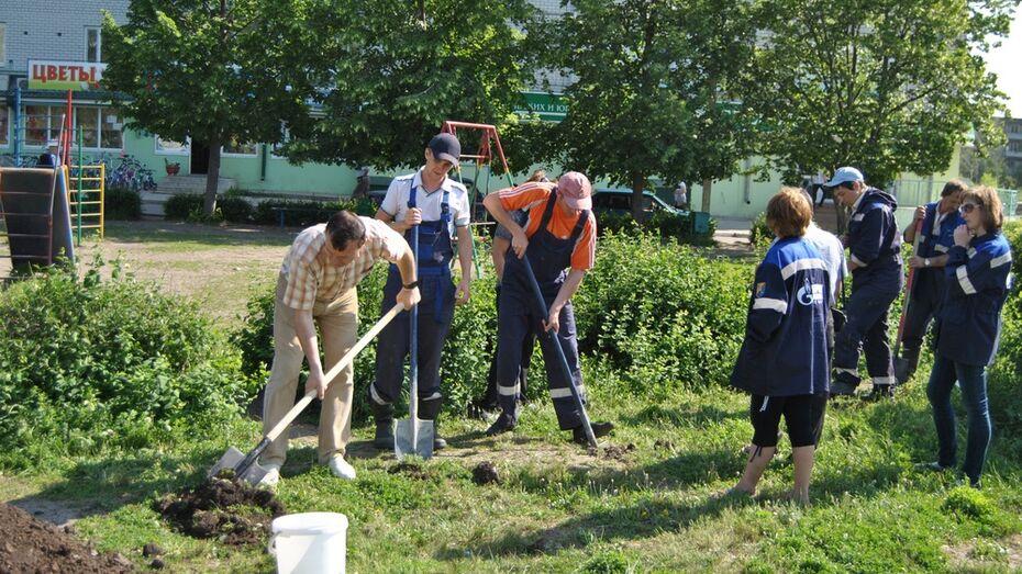 К Дню Победы в Семилукском районе высадят более 13,5 тыс деревьев