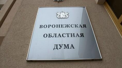 Воронежская облдума разрешила тратить маткапитал на реабилитацию детей-инвалидов