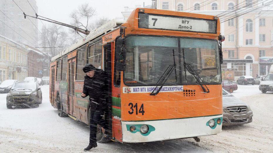 Власти собрались «воскресить» воронежские троллейбусы с помощью «Мосгортранса»