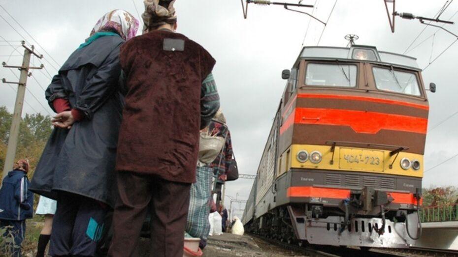 Во время праздников на железнодорожных путях в Воронежской области погибло два человека