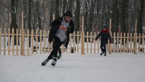 В воронежском парке «Орленок» открылся бесплатный каток