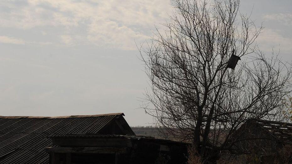 В Воронеже мошенники завладели двумя участками по фальшивым документам