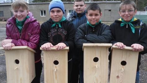 Рамонские школьники развесили в лесу сделанные своими руками скворечники