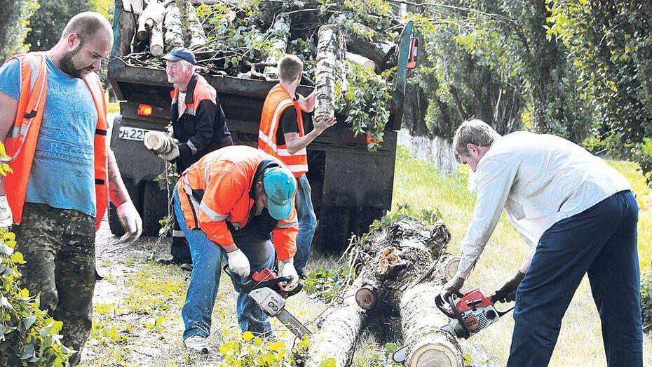 В Таловском районе из-за непогоды без электричества остались 18 поселков