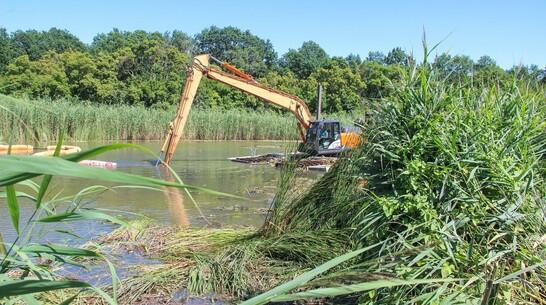 В Лискинском районе очистят заиленное русло и заросшие берега реки Икорец