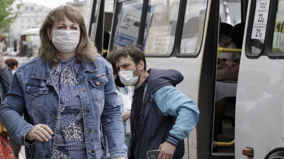 За время пандемии от коронавируса вылечили более 17 тыс воронежцев