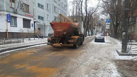 Превентивный удар по снегу и гололедице нанесли в Воронеже