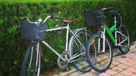 В Воронеже откроется бесплатная школа велотуризма