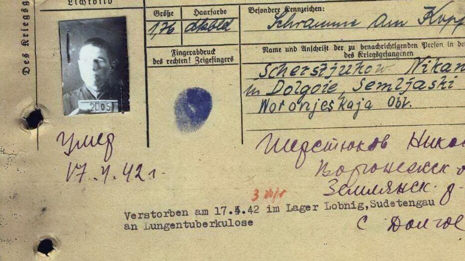Пенсионерка из Ленобласти объявила поиски родных погибшего в немецком плену воронежца
