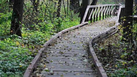 Воронежский заповедник открыл экотропы для посетителей
