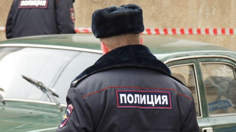 Полицейские задержали укравшего из авто магнитолу и тушки бройлеров подгоренца
