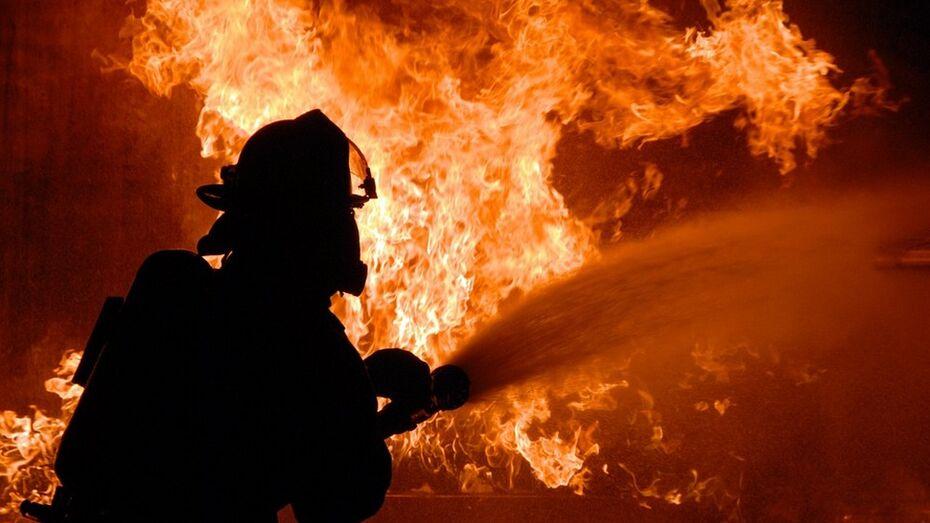 В богучарском селе из-за электрообогрева гусят сгорела квартира