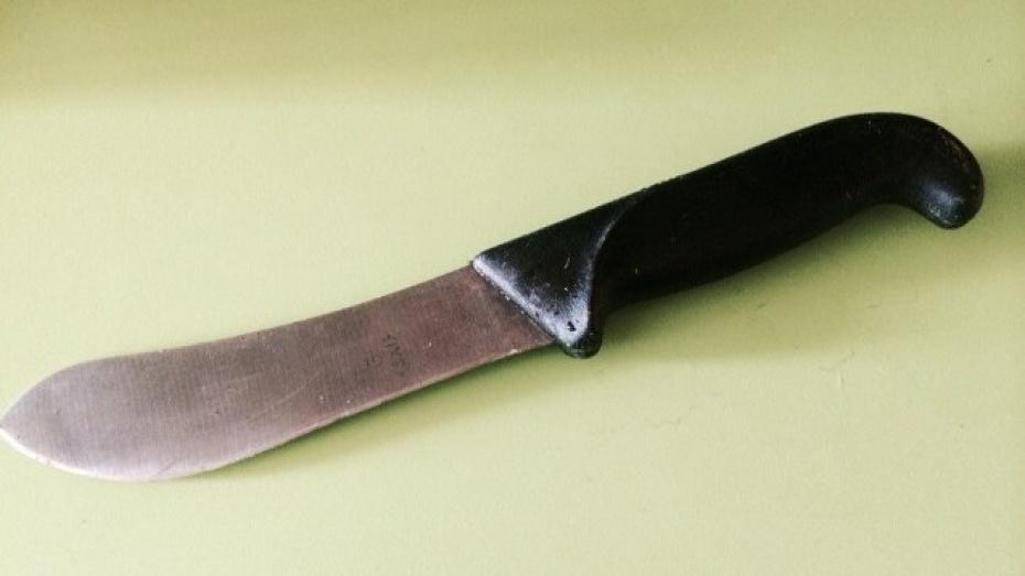 Под Воронежем мать ранила ножом дочь