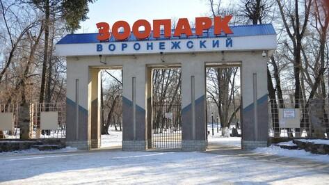 Воронежский зоопарк перейдет на зимний режим работы