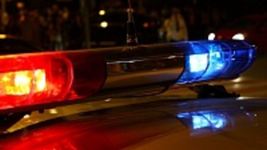 В Воронеже задержан водитель, сбивший 2-летнюю девочку на пешеходном переходе