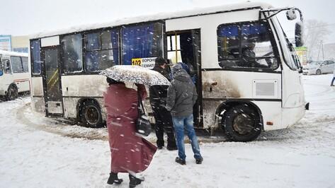 В Семилукском районе снегопад парализовал работу общественного транспорта