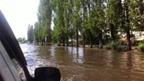 В Воронеже забитая ливневка вызвала дорожный коллапс