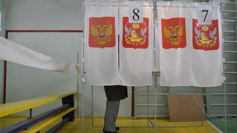 Воронежец выдвинулся на выборы в Госдуму от «Метагалактической конфедерации»
