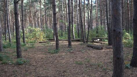 В Воронеже может появиться парк «Воеводы Сабурова»