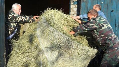 Нижнедевицкие охотники заготовили корм для зверей и птиц