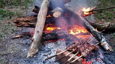 Спецстоянки для отдыха на природе под Воронежем оборудуют до 2016 года