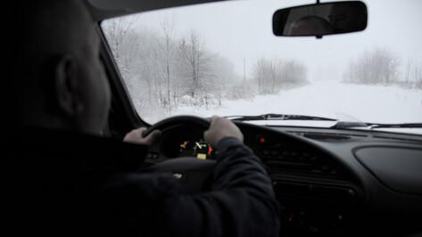 Автомобилисты смогут пожаловаться на уборку дорог в Воронежской области