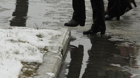 Управы районов Воронежа будут отчитываться об уборке улиц ежедневно