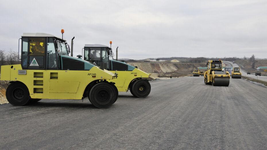 Власти Воронежской области поздравили дорожников с профессиональным праздником