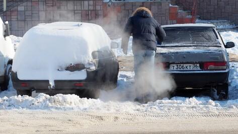 Прохладная снежная погода сохранится в Воронеже до апреля