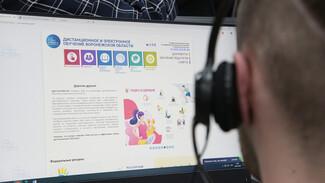 Российских школьников во время вспышек ОРВИ будут отправлять на онлайн-обучение