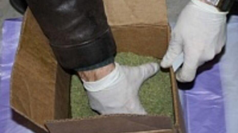 В подвале многоэтажки в Россоши нашли два кг марихуаны