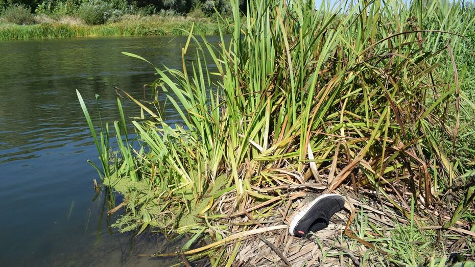 В Воронежской области в реке Ворона нашли тело 46-летнего мужчины