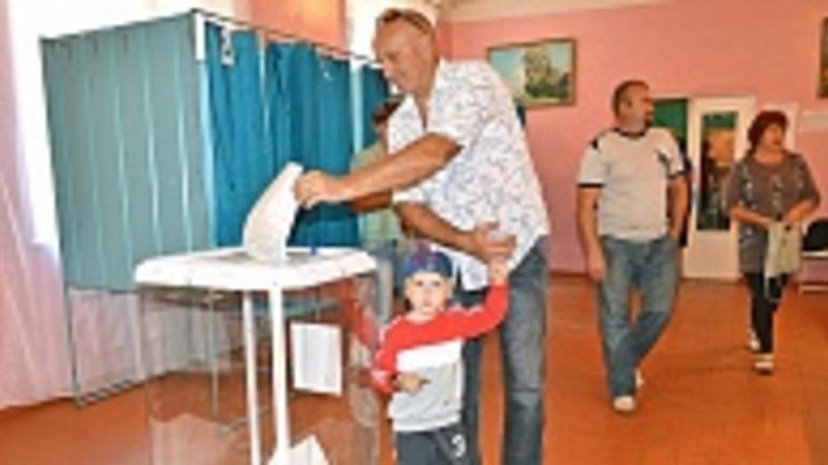 В Бутурлиновском районе  проголосовало более 73% избирателей