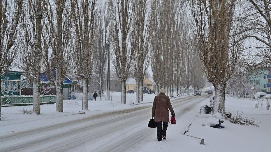 В Грибановском районе 3 апреля выпало 5 см снега
