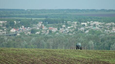Опрос РИА «Воронеж». Что изменилось в регионе за 10 лет?