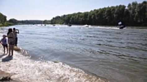 В Воронежской области экологи укрепят берега Дона