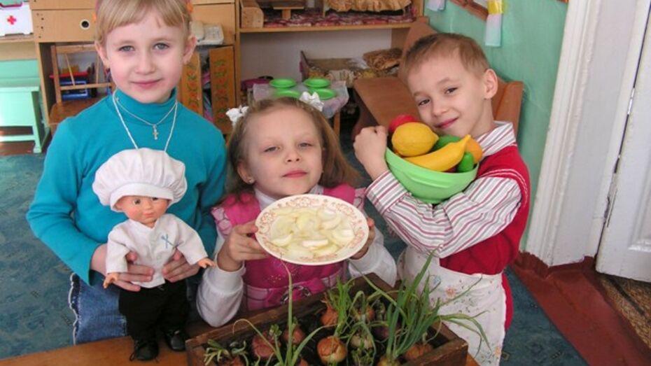 В бутурлиновских детских садах выращивают лук и чеснок