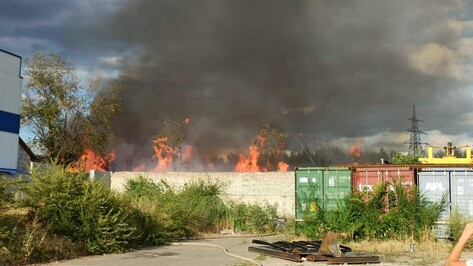 В Железнодорожном районе Воронежа загорелась лесополоса