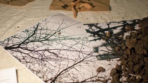 Воронежский художник Сергей Ряполов принес в галерею осенние листья и землю
