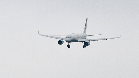 Небо над Правым берегом Воронежа закроют для самолетов