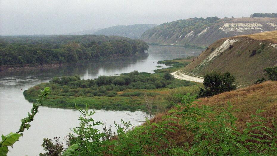 Правительство потратит на оздоровление и восстановление реки Дон 100 млрд рублей