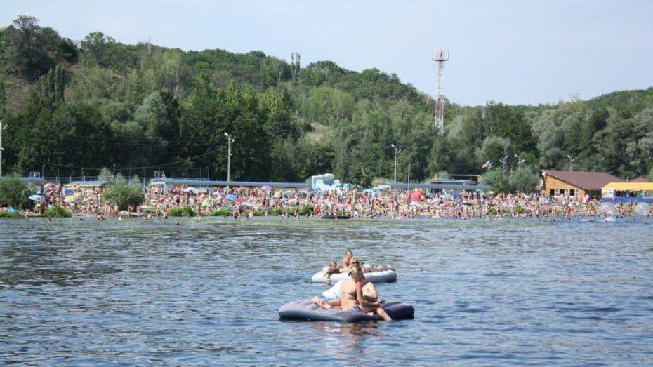 Власти Воронежа проверят арендаторов городских пляжей
